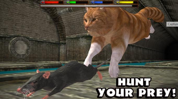 Симулятор кота на Android - Ultimate Cat Simulator СОФТ